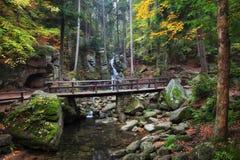 Γέφυρα πέρα από το ρεύμα στο δάσος βουνών φθινοπώρου Στοκ φωτογραφία με δικαίωμα ελεύθερης χρήσης