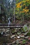 Γέφυρα πέρα από το ρεύμα στο δάσος βουνών Στοκ εικόνες με δικαίωμα ελεύθερης χρήσης