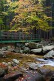 Γέφυρα πέρα από το ρεύμα στο δάσος φθινοπώρου Στοκ Εικόνες