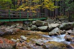 Γέφυρα πέρα από το ρεύμα στο δάσος φθινοπώρου Στοκ Φωτογραφίες