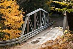 Γέφυρα πέρα από το φαράγγι του Griffin το φθινόπωρο Στοκ Φωτογραφία