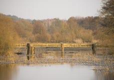 γέφυρα παλαιά πέρα από τον π&omicro Στοκ εικόνα με δικαίωμα ελεύθερης χρήσης