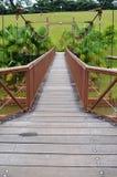 Γέφυρα περιπέτειας, Σιγκαπούρη Στοκ εικόνα με δικαίωμα ελεύθερης χρήσης