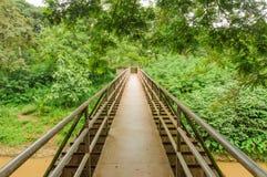 Γέφυρα περπατήματος σιδήρου πέρα από τον ποταμό που καλύπτεται από τα δέντρα Στοκ εικόνες με δικαίωμα ελεύθερης χρήσης