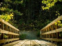 Γέφυρα ποδιών στα ίχνη πεζοπορίας/αλόγων στοκ φωτογραφία με δικαίωμα ελεύθερης χρήσης