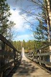 γέφυρα που αναστέλλεται Στοκ φωτογραφία με δικαίωμα ελεύθερης χρήσης