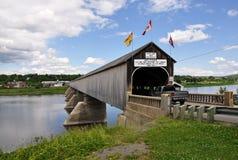 γέφυρα που καλύπτεται πέρ&a στοκ φωτογραφίες με δικαίωμα ελεύθερης χρήσης