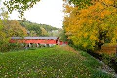 γέφυρα που καλύπτεται πέρ&a Τοπίο φθινοπώρου Στοκ Εικόνες