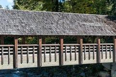 γέφυρα που καλύπτεται Στοκ Εικόνες