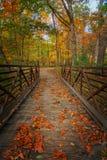 Γέφυρα ποδιών φθινοπώρου Στοκ φωτογραφία με δικαίωμα ελεύθερης χρήσης
