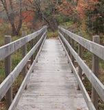Γέφυρα ποδιών Στοκ εικόνα με δικαίωμα ελεύθερης χρήσης