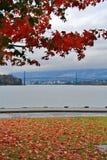 Γέφυρα πυλών λιονταριών, χρώμα πτώσης, φύλλα φθινοπώρου, τοπίο πόλεων στο Stanley Paark, στο κέντρο της πόλης Βανκούβερ, Βρετανικ Στοκ Εικόνες
