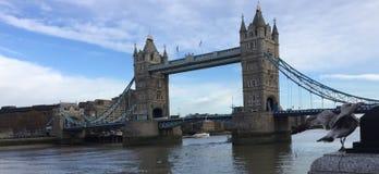 Γέφυρα πύργων του Λονδίνου Στοκ εικόνα με δικαίωμα ελεύθερης χρήσης