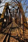 γέφυρα σκουριασμένο τραίνο διαδρομών Στοκ Εικόνα