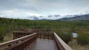 Γέφυρα στα βουνά, νεφελώδης ημέρα απόθεμα βίντεο