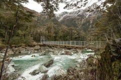 Γέφυρα στη διαδρομή Routeburn, Νέα Ζηλανδία Στοκ φωτογραφία με δικαίωμα ελεύθερης χρήσης