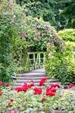 Γέφυρα στη φυτεία με τριανταφυλλιές, βοτανικός κήπος του Δουβλίνου, Ιρλανδία στοκ εικόνες