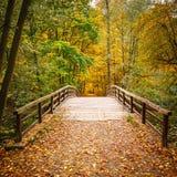 Γέφυρα στο δάσος φθινοπώρου στοκ φωτογραφίες με δικαίωμα ελεύθερης χρήσης