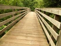 Γέφυρα στο δάσος Στοκ Φωτογραφίες