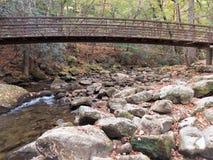 Γέφυρα στο δάσος Στοκ φωτογραφίες με δικαίωμα ελεύθερης χρήσης