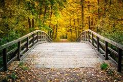 Γέφυρα στο πάρκο φθινοπώρου στοκ εικόνες