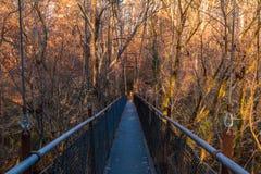 Γέφυρα στο πάρκο Lullwater, Ατλάντα, ΗΠΑ Στοκ εικόνες με δικαίωμα ελεύθερης χρήσης