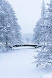 Γέφυρα στο χιόνι Στοκ φωτογραφίες με δικαίωμα ελεύθερης χρήσης