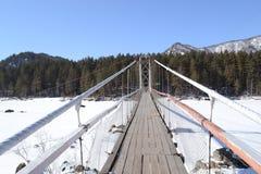 Γέφυρα σχοινιών Στοκ Φωτογραφία