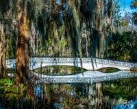 Γέφυρα της Ashley Στοκ φωτογραφίες με δικαίωμα ελεύθερης χρήσης