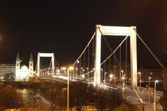 Γέφυρα της Elizabeth Στοκ φωτογραφίες με δικαίωμα ελεύθερης χρήσης
