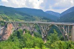 Γέφυρα της Tara Στοκ Εικόνες