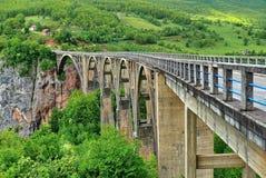 Γέφυρα της Tara Στοκ εικόνα με δικαίωμα ελεύθερης χρήσης