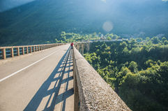 Γέφυρα της Tara Στοκ Φωτογραφίες