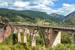 Γέφυρα της Tara Durdevica πέρα από τον ποταμό της Tara, Μαυροβούνιο Στοκ Εικόνες