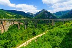 Γέφυρα της Tara Durdevica Στοκ Εικόνα