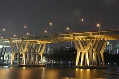 Γέφυρα του Benjamin Sheares Στοκ Φωτογραφίες