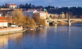 Γέφυρα του Charles και μια λίμνη στην Πράγα στην ηλιοφάνεια πρωινού στοκ εικόνα