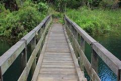 Γέφυρα του ironwood που που κρύβεται στο βαθύ δάσος Στοκ Φωτογραφίες