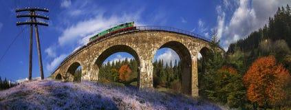 Γέφυρα τραίνων diesel στον Αυστριακό Στοκ Εικόνα