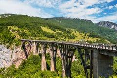 Γέφυρα τόξων της Tara Durdevica Στοκ εικόνα με δικαίωμα ελεύθερης χρήσης