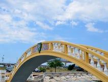 Γέφυρα Carcavelos, Αβέιρο, Πορτογαλία Στοκ Εικόνες