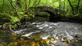 Γέφυρα Hisley απόθεμα βίντεο