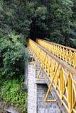 Γέφυρα, Ranomafana NP, Μαδαγασκάρη Στοκ φωτογραφία με δικαίωμα ελεύθερης χρήσης