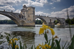 γέφυρα s Αβινιόν στοκ εικόνες