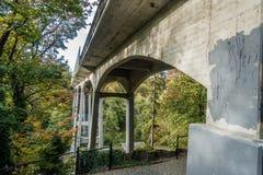 Γέφυρα Saltwater στο πάρκο στοκ εικόνα