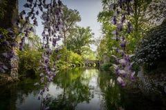 Γέφυρα Spettacula στο πράσινο wather του ποταμού στον κήπο στοκ εικόνα