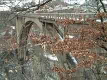 Γέφυρα Tara Στοκ εικόνα με δικαίωμα ελεύθερης χρήσης