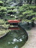 Γήινη ζωντανή περισυλλογή φύσης της Zen στοκ φωτογραφίες