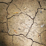 Γήινη ξηρασία στοκ φωτογραφίες