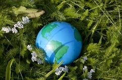 γήινη χλόη πράσινη Στοκ εικόνες με δικαίωμα ελεύθερης χρήσης